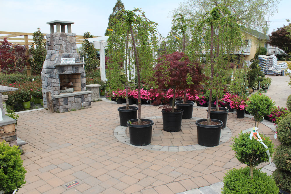 paver display chantilly garden center