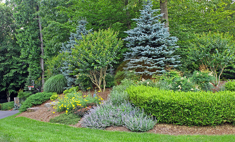 chantilly landscape companies