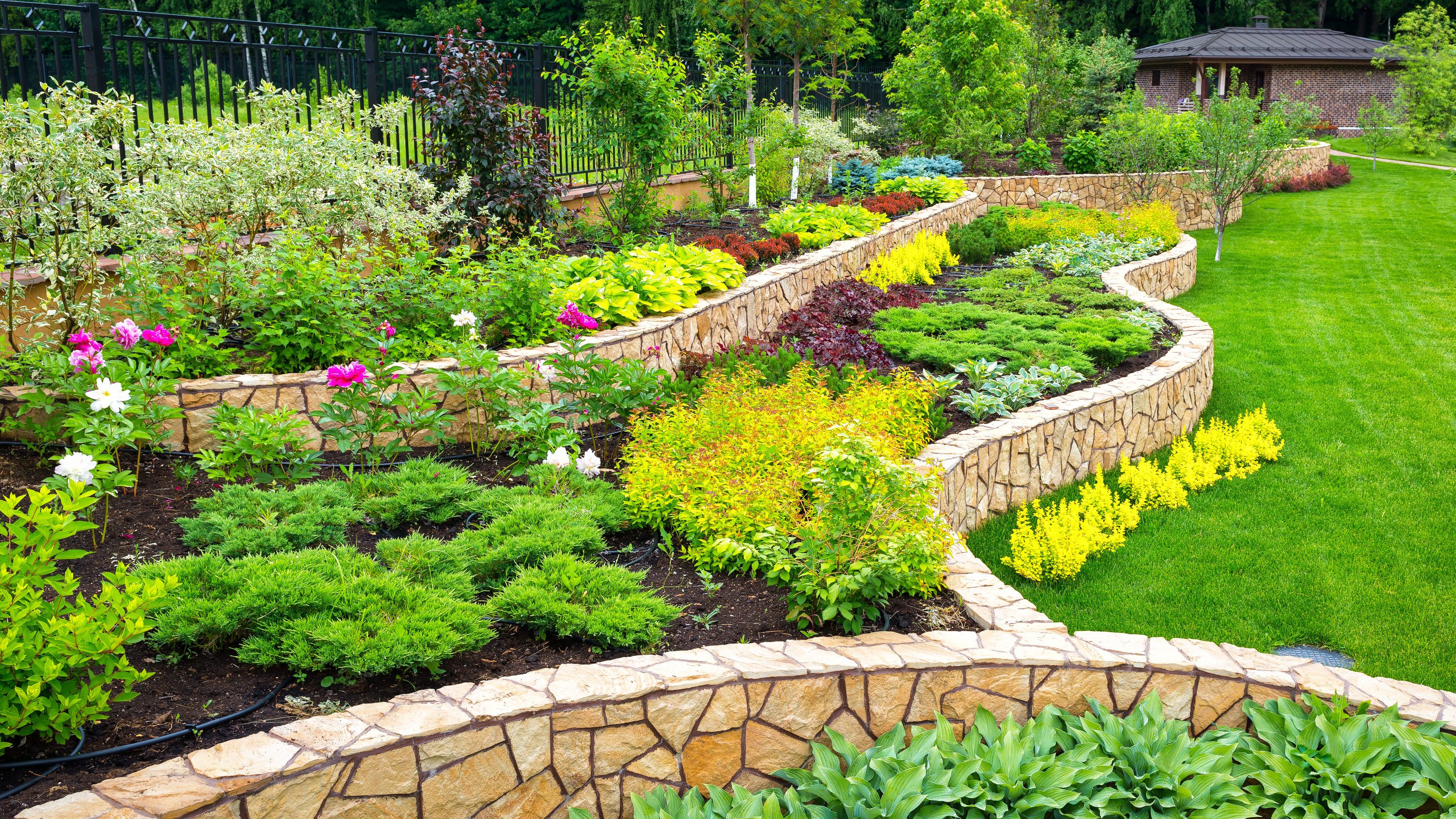 Landscape Design Choosing Your Plants